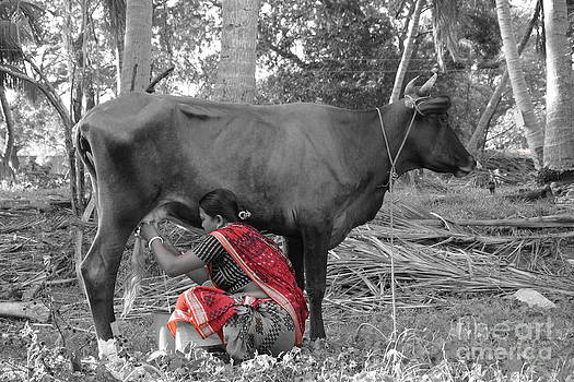 Milkmaid  by Bobby Mandal