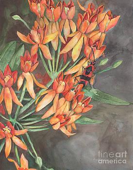 Milkweed with Milkweed Bug by Nicole Werth