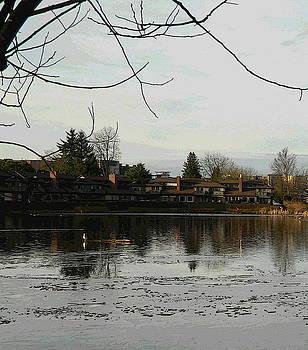 Nicki Bennett - Mill Lake Reflecting A
