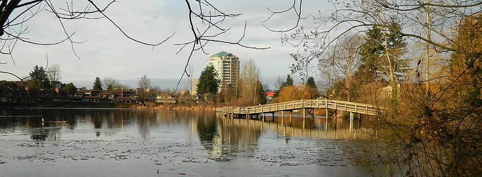 Nicki Bennett - Mill Lake Reflecting