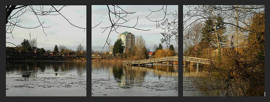 Nicki Bennett - Mill Lake Reflecting Sample