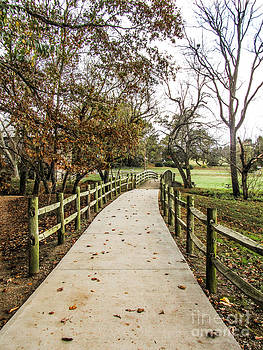 Jaclyn Hughes Fine Art - Mill Path
