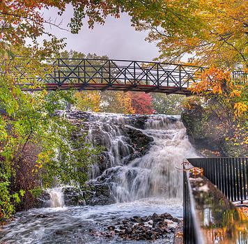 Mill Pond Park by Craig Szymanski