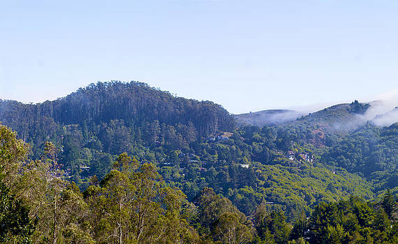 Mill Valley CA Hills with Fog coming in Left Panel by G Matthew Laughton