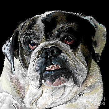 Millie the bulldog by Maria Schaefers