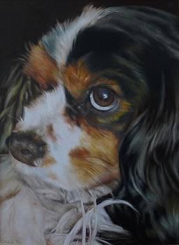 Milo by Cherise Foster