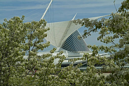 Devinder Sangha - Milwaukee Art Museum through flowered trees