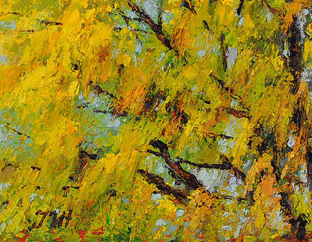 Mimosa. by Julia Utiasheva