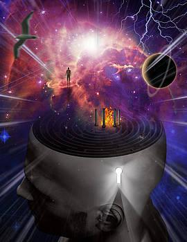 Mind Maze by Bruce Rolff