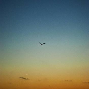 Mindelo. Flight. by John Magnet Bell