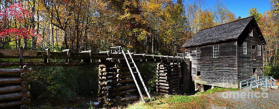 Paul Mashburn - Mingus Mill