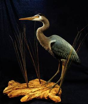 Miniature Great Blue Heron Sculpture 29 inches by Chris Dixon