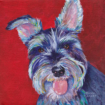 Miniature schnauzer by Terry Albert