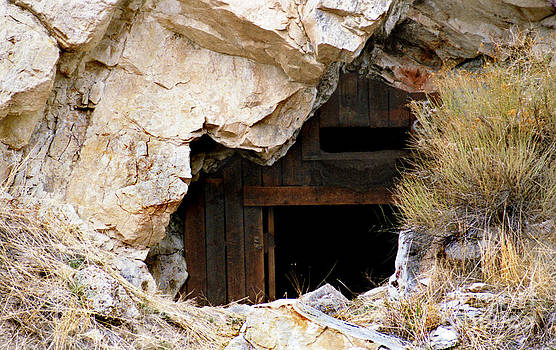 Mining Backbone by Minnie Lippiatt