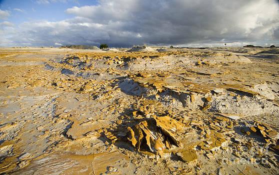 Tim Hester - Mining Waste