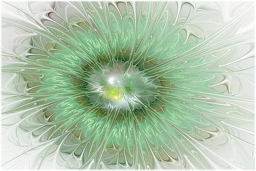 Mint Green by Svetlana Nikolova
