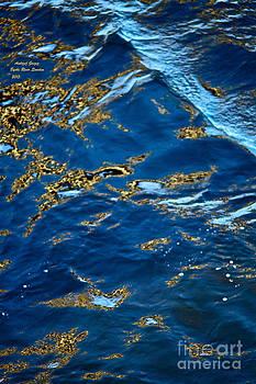 Miracle.  Byske River. Sweden. by Andrzej Goszcz. 2013. by  Andrzej Goszcz