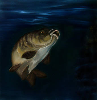 Mirror Carp 4 by Cynthia Adams