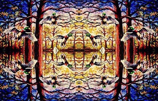 Mirror Ducks by Sebastian Pierre