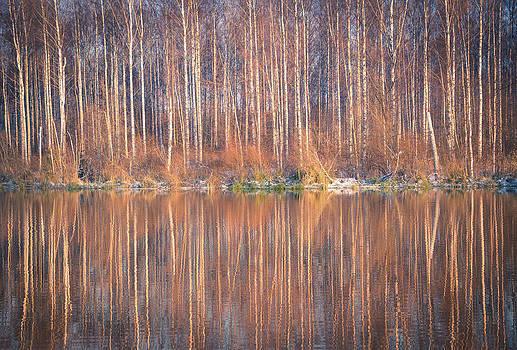 Mirror In The Lake by Matti Ollikainen
