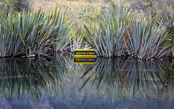 Venetia Featherstone-Witty - Upon Reflection Mirror Lakes New Zealand
