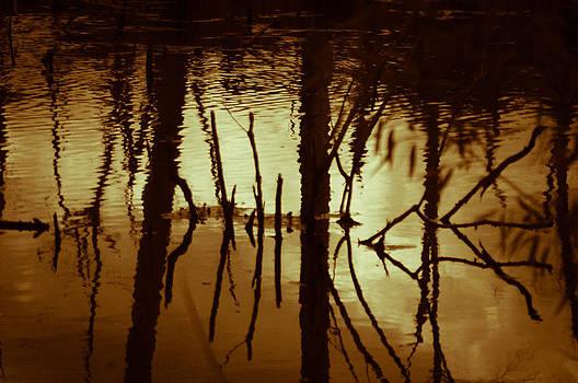 Joe Bledsoe - Mirror of Gold