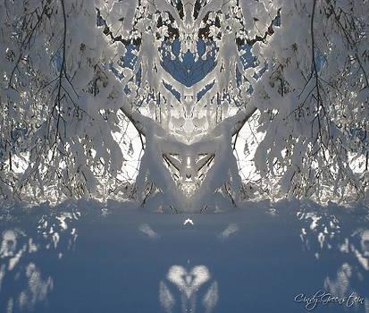 Mirror Of Snow  by Cindy Greenstein