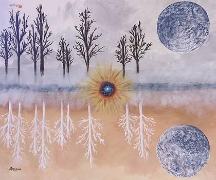 Mirrored Worlds  by Cynthia Morgan