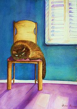 Kitty's Nap by Jane Ricker