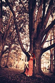 Miss Scarlett by Emily Stauring