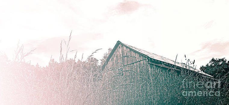 Missouri Barn 1 by Shannon Beck-Coatney