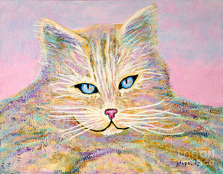 Missy Abstract Cat by Barney Napolske