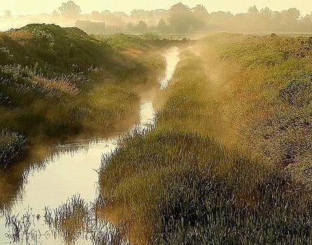 Mist and the Bridge by Sarah Boyd