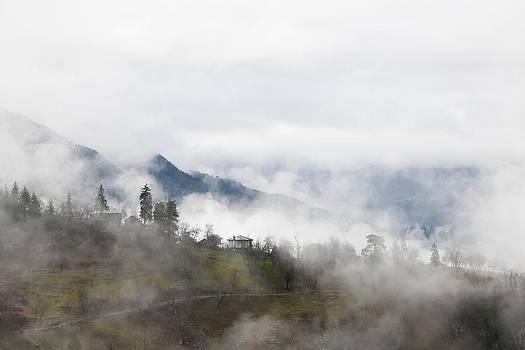 Mist by Gouzel -