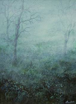 Mist on the Meadow by Mary Wolf
