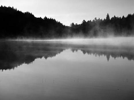 Mists of the Morning by Rob Merriam