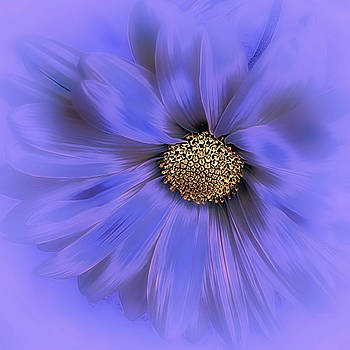 Misty Blue by Darlene Kwiatkowski