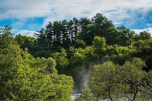 Misty Creek by Jason Brow