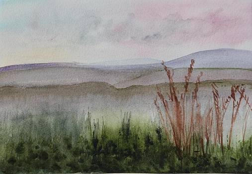 Donna Walsh - Misty Day in NEK