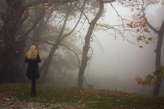Misty by Dimitris Lillis