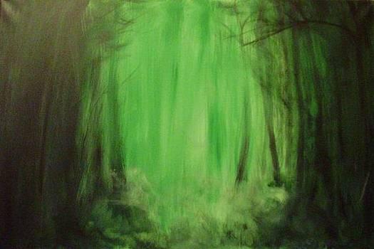 Misty forest by Danas Zymonas