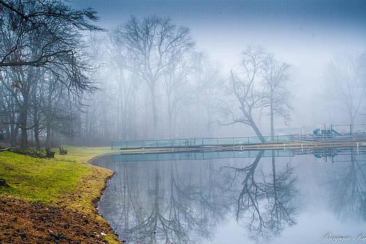 Misty Lake by Ranjana Pai