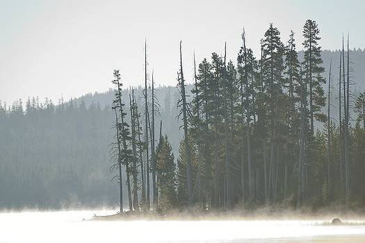 Misty Medicine Lake Morning by Rich Rauenzahn