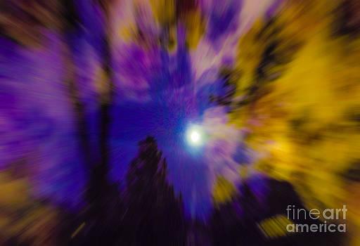 Algirdas Lukas - Misty moonlight explosion