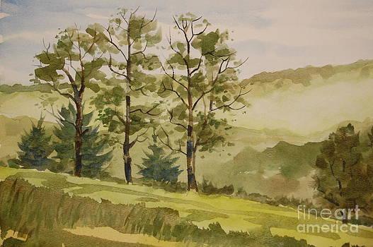 Misty Morn by Bill Dinkins