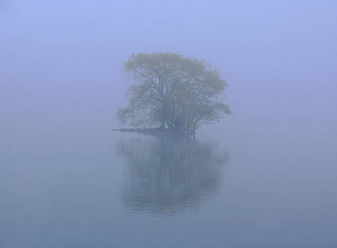 Juergen Roth - Misty Morning at Jamaica Pond