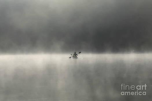 Misty Morning by Brenda Schwartz
