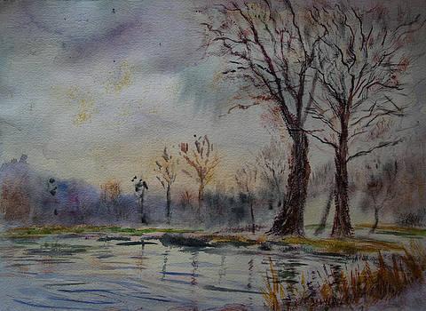 Misty morning by Horacio Prada