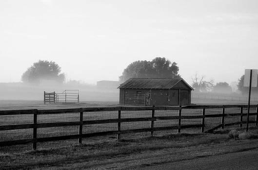 Linda Rae Cuthbertson - Misty Morning in Florida