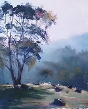 Misty Morning  by Kathy  Karas